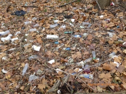 Southwest Side of Adams Ave . Litter, plastic bottles tossed into park by commuters