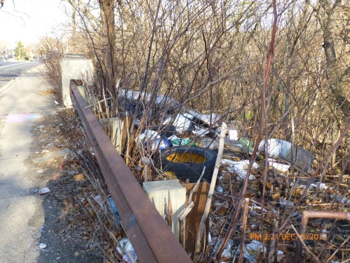 Illegal Dumping on south east side of Whitaker Ave Bridge.