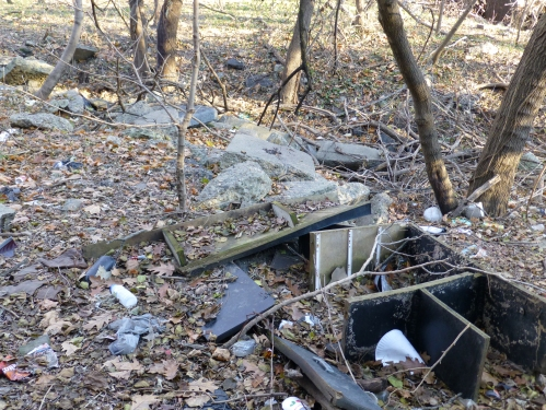 Illegal  dumping along southeast side of Whitaker Ave Bridge