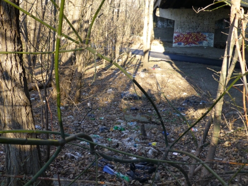 Southwest side of Whitaker Ave Bridge.  PP&R's new trash is visible along with extensive trash.