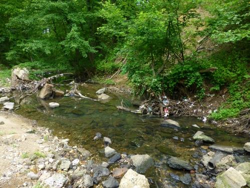 Rock Creek Debris Jam: 6/6/13