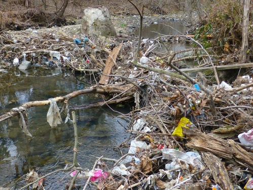 Rock Creek Debris Jam: 3/15/13