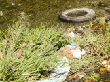 Tacony Creek Trash, Downstream Whitaker Ave, Creek Channel