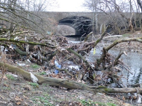 Stream trash just downstream of Roosevelt Blvd Bridge - SW side
