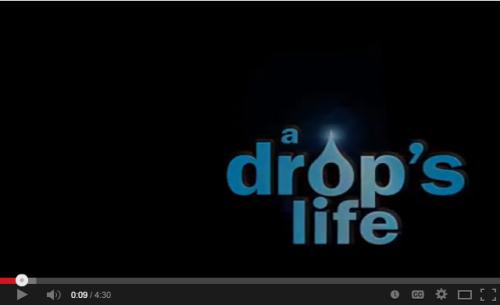 Drops_life