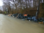 5100 Block Ruffe: Chronic dumping site. Site of 2015 City Cleanup Press Conference.