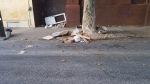 311 Photo District 8: Construction Debris Dumping