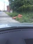 311 Photo District 8: Furniture Dumping