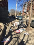 """Illegal Dumping -bags of trash may rip,spill, and scatter over a wide area, appearing to be  """"litter"""" when it is actually trash."""